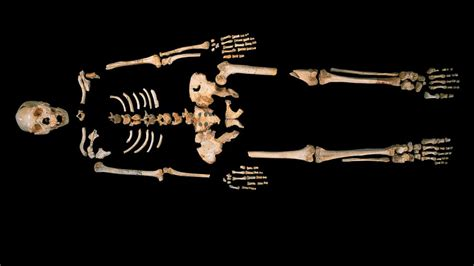 'Pit of Bones' Yields Oldest Known Human DNA - ABC News