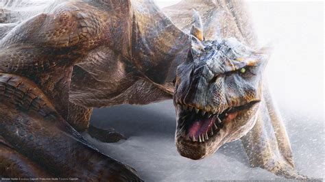 Monster hunter 2 Wallpapers   HD Wallpapers   ID #1588