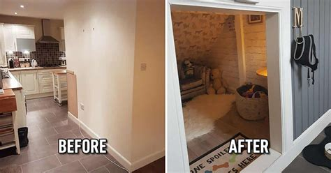 Dog Owners Build A Luxury Dog Room After Finding Out They